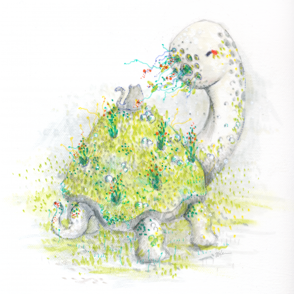 Image of Turtle Island t-shirt design.
